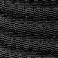 Black Plus