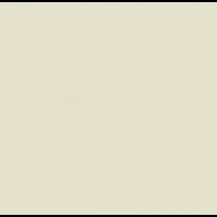 224 Ivory