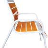 C-50EZ Dining Chair