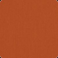 Canvas-Rust