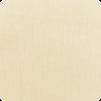 Canvas-Vellum