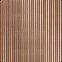 Delray-Stripe-Conch