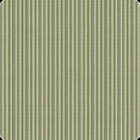 Delray-Stripe-Kiwi