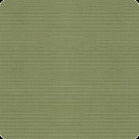 Dupioni-Kiwi