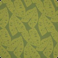 Radiant-Kiwi